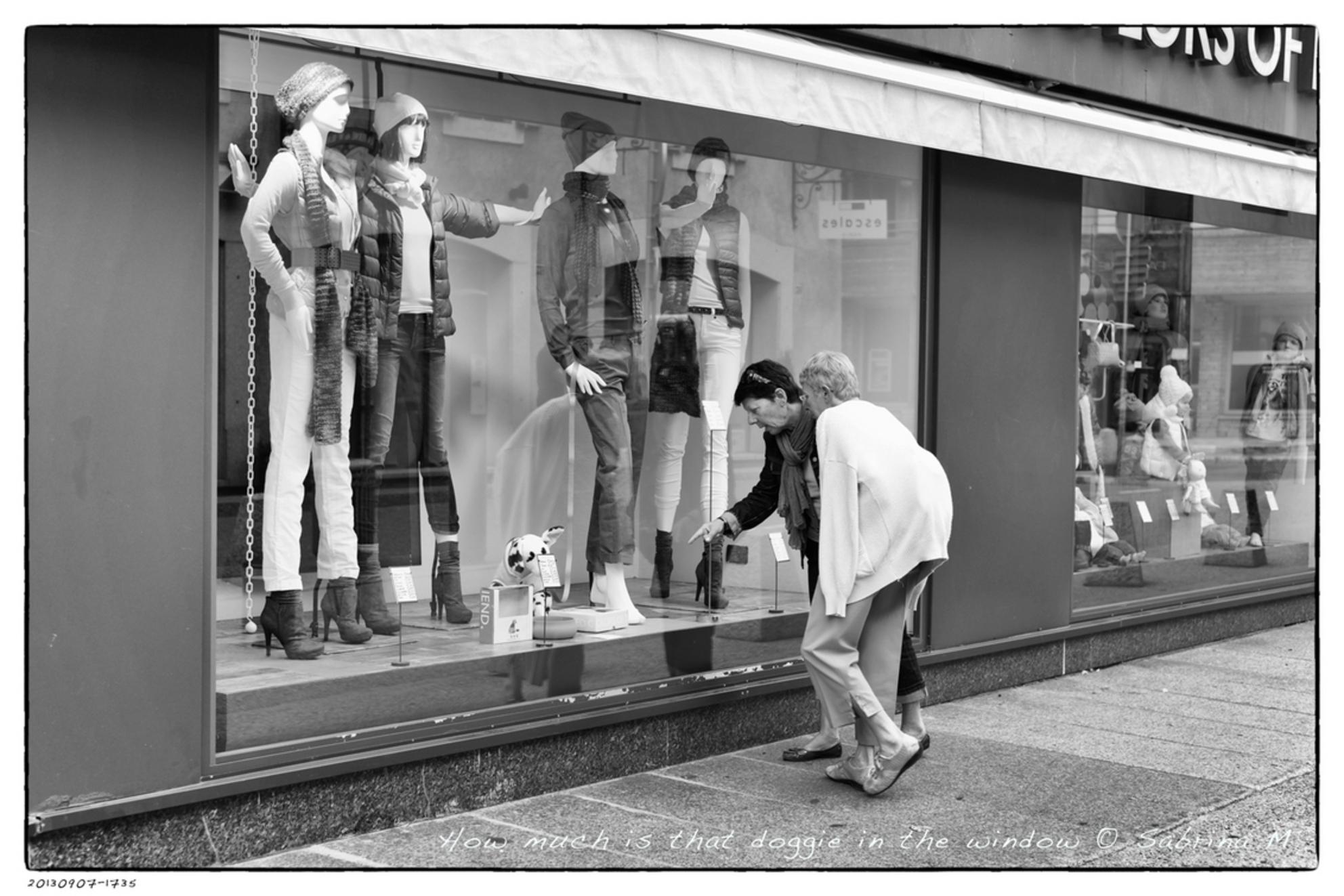 How much is that doggie in the window ... - Gemaakt in Megeve, Frankrijk. De mevrouw met de jas over haar rugzak viel me eerst op, dan het hondje en even later kwam dit uit de bus. - foto door sabbe op 29-09-2013 - deze foto bevat: straat, hond, zwartwit, vrouwen, straatfotografie, etalage, mode, etalagepoppen