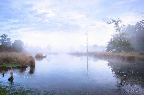 Morning stillness