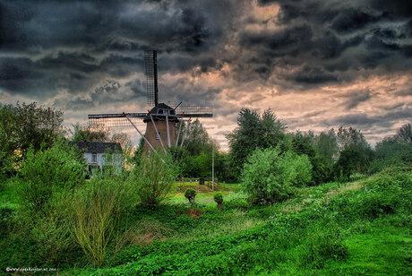 Molen Rijswijk (gld)