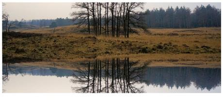 reflectie II