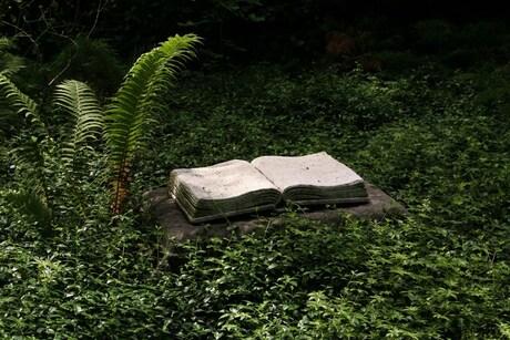 Begraafplaats in Utrecht