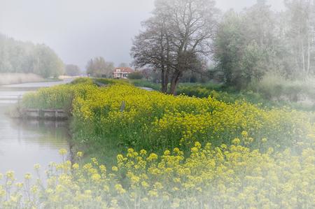 slingeveldse plassen - een fietstochtje door De Alblasserwaard in april gaf dit mooie plaatje - foto door johntomeij op 03-11-2019 - deze foto bevat: landschap, polder