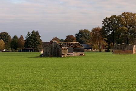 vervallen. - Oud kippenhok in Lunteren.  31 oktober 2020. Groetjes Bob. - foto door oudmaijer op 04-11-2020 - deze foto bevat: lucht, natuur, licht, herfst, landschap, polder, lunteren