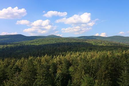 Uitzichtpunt. - Overzicht over de boomtoppen van  44 meter hoogte  van Nationalpark Bayerischer Wald Duitsland van het gedeelte van Tsjechië  4 juni 2018. Groetje - foto door oudmaijer op 16-08-2020 - deze foto bevat: lucht, uitzicht, natuur, licht, vakantie, landschap, bos, bomen, bergen, duitsland, nationalpark, bayerischer wald