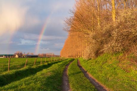 Het einde van de regenboog