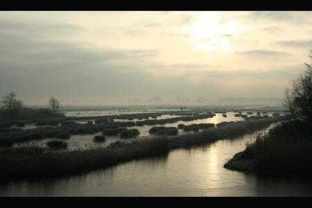 Winter waterland - Waterland, Noord-Holland. - foto door vlienster op 27-03-2011 - deze foto bevat: reflectie, landschap, mist, molen, holland, nederland, zonsopgang, polder, waterlandschap