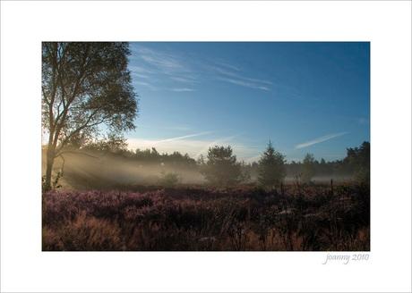 Joanny3-september morning-3