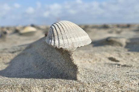 Zand wordt weggeblazen
