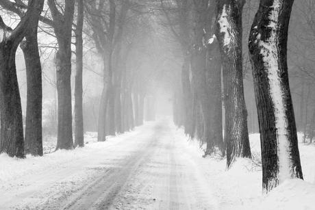 Dikke laag sneeuw