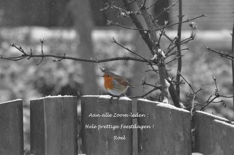 Kerstkaart Zoom 2014.jpg