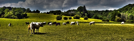 Limburg heuvelland