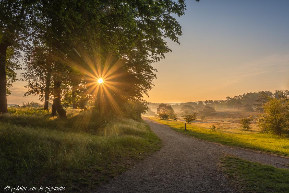 Brunssummerheide misty morning sunburst - Brunssumerheide zonnestralen tijdens de zonsopkomst.  Efix: ISO: 100, 17mm, f/11, 1/125sec.  Bedankt, voor jullie fijne reacties. Groet, John. - foto door JvandeGazelle op 28-05-2020 - deze foto bevat: lucht, zon, lente, natuur, park, licht, landschap, mist, heide, bos, tegenlicht, zonsopkomst, bomen, zonnestralen, natuurmonumenten, brunssum, zonneharp, brunssummerheide, staatsbosbeheer, sunburst, john van de gazelle, natinaalpark
