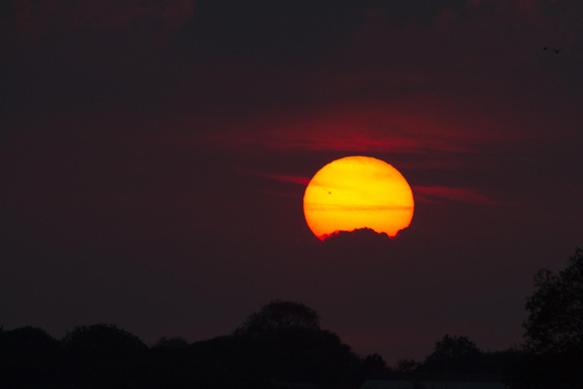 Zon - Zonsondergang in de polder - foto door dumontwj op 25-09-2011 - deze foto bevat: sunset, zonsondergang