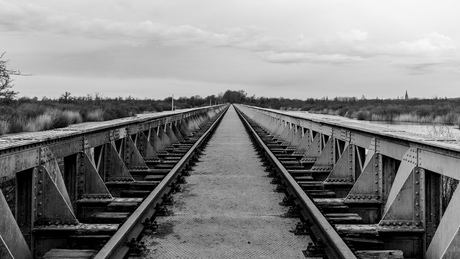 Spoorbrug Den Bosch