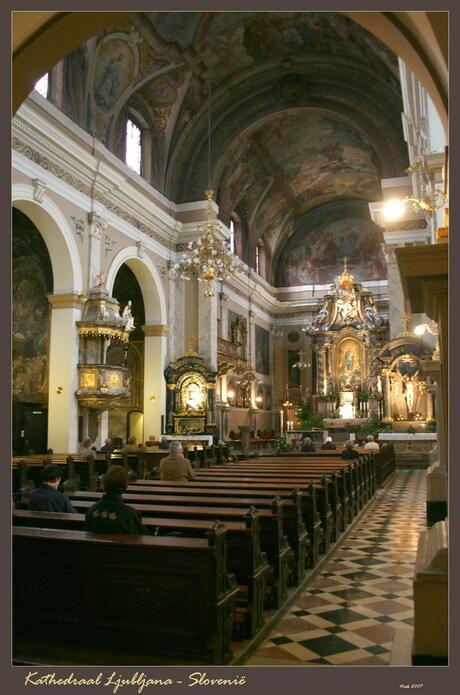 Kathedraal Ljubljana Slovenie