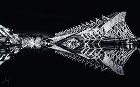 Black Reflections