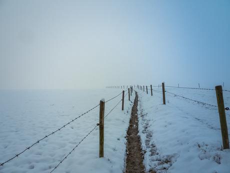 uitzicht in de sneeuw