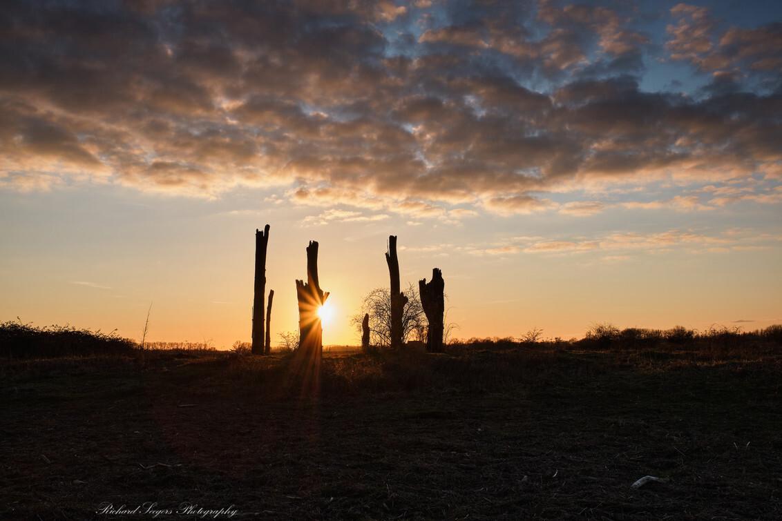 Wanted dead ore alive (Bon Jovi) - - - foto door RichardSeegers op 08-03-2021 - deze foto bevat: lucht, wolken, natuur, avond, zonsondergang, landschap, tegenlicht, polder, woodhenge