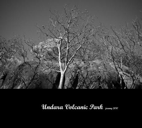 Undara Volcanic Park-3