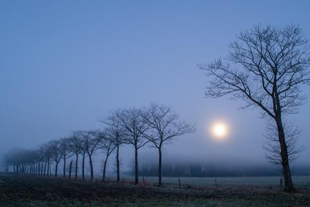 Aubade - Maansondergang (volle maan), nevel en mist en vorst, wat een magische ochtend... - foto door KaatD op 01-03-2021 - deze foto bevat: winter, mist, zonsopkomst, maan, nacht