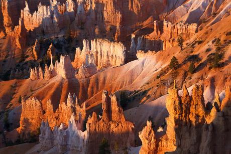 Bryce canyon - detail