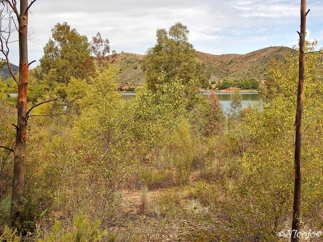 Herfst in aankomst..... - Bedankt voor al jullie reacties op mijn laatste foto's:) - foto door ocelot_zoom op 30-09-2020 - deze foto bevat: water, natuur, landschap, bos, bomen, bergen, spanje, nicojo