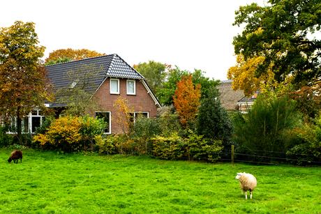 Herfst op het platteland.