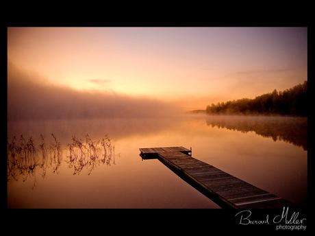 Glorious Morning IV