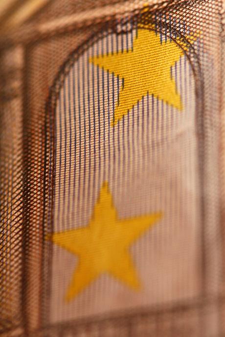 Macro 2 sterren - Maar wie weet waar deze op zitten?