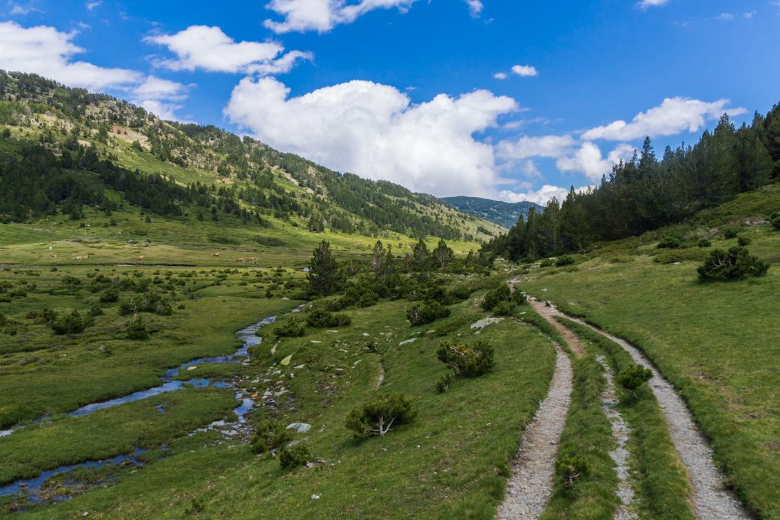 La Têt - De rivier 'La Têt'. Het laatste pad van de vakantie. Een prachtig lang dal met een mooi pad. De lijnen door de foto en de wolken in de verte vind ik  - foto door Sake-van-Pelt op 15-09-2014 - deze foto bevat: lucht, zon, water, natuur, licht, vakantie, landschap, bos, bomen, bergen, rivier, pyreneeen