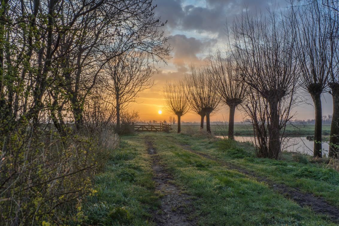 Koude zonsopkomst in de polder - Foto gemaakt tussen Bergambacht en Stolwijk. Gemeente Krimpenerwaard, Groen Hart, Zuid Holland! - foto door RossumFotografie op 16-03-2020 - deze foto bevat: gras, wolken, hek, landschap, nevel, zonsopkomst, bomen, sloot, polderlandschap, polder, stolwijk, bergambacht