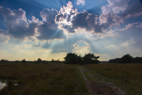 wolken Plateaux 3-10-2014_2_.jpg