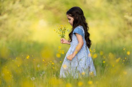 Bloemen Plukken
