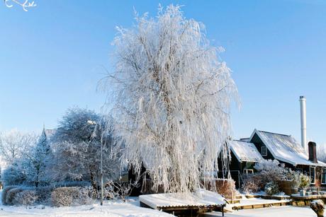 huis in wintersfeer
