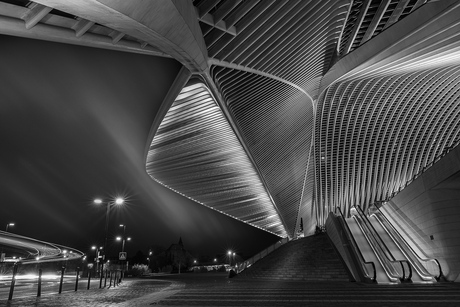 Guillemins by night
