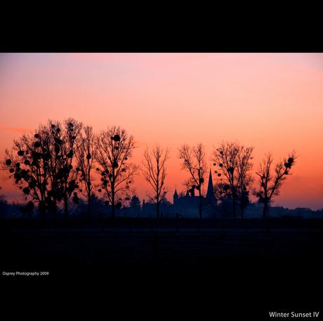 Winter Sunset IV