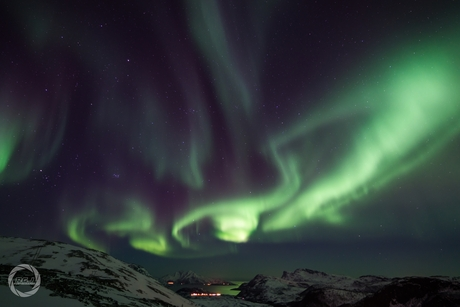 Skulsfjord noorderlicht