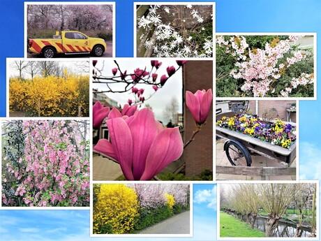 collage Fijne Paasdagen voor alle medezoomers 2 april 2021