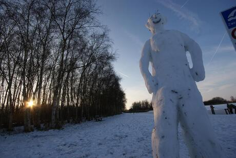Twiske in de winter 1