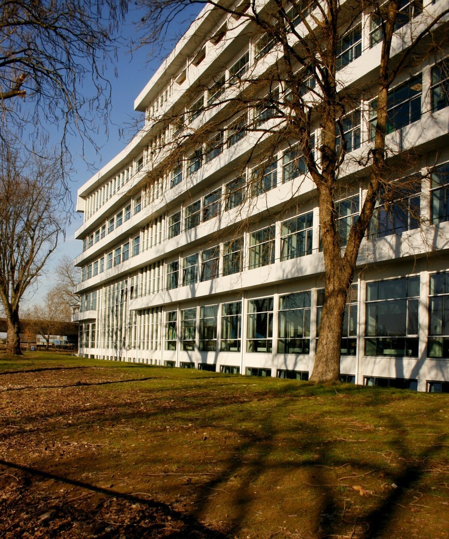 Azc Maastricht - - - foto door Smeets op 06-03-2021 - deze foto bevat: lijnen