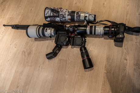 Canon Geweer