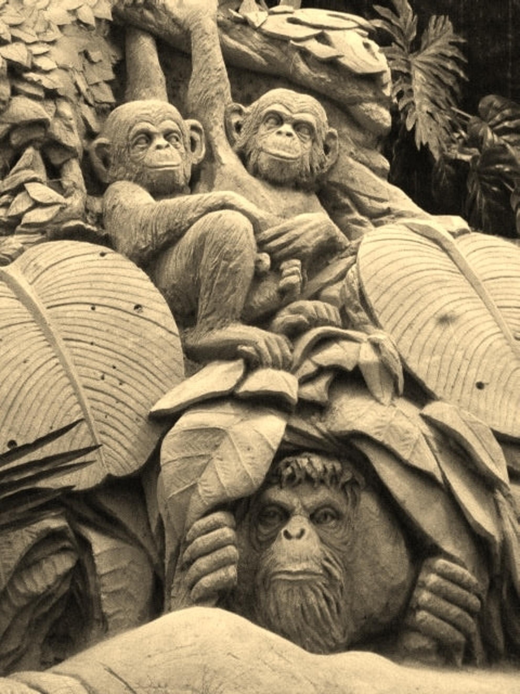 Aapjes kijken - zandsculptuur- Garderen - foto door 1Herdershond op 18-05-2019 - deze foto bevat: beelden, zand, expositie, zandsculpturen, beeldhouwwerk, sculpturen, apenafbeelding, aapjes afbeelding - Deze foto mag gebruikt worden in een Zoom.nl publicatie