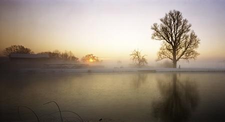 Spookverlaat - De boom door de seizoenen heen. Op Kodak Ektar met Cambo 6x12. - foto door yurivangeenen op 16-01-2013