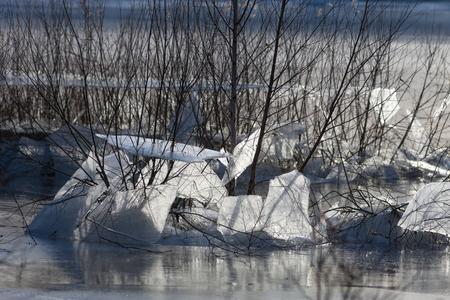 Ijs in Keent - In de uiterwaarden van de Oude Maas  ontstond door het hoge water en vorst dit natuurverschijnsel.  Dank voor jullie reacties, stemmen en favoriete - foto door Santakees op 09-03-2021 - deze foto bevat: winter, ijs, maas, vorst, uiterwaarden, kou, ijsschotsen, keent, hoge water, oude maas bocht