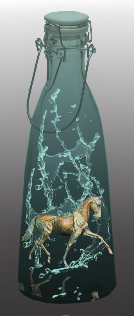 fles-paard-Water1