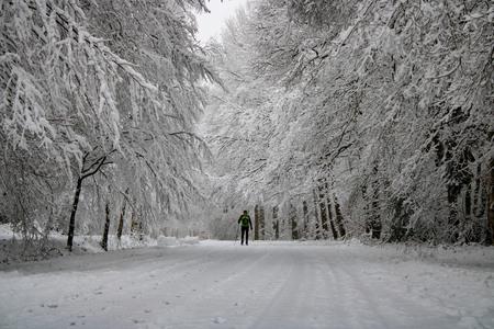 Winters Plaatje - Op 25-1-2021 was ik al heel vroeg in het Vijlenerbos om de sneeuw te fotograferen. En ineens zag ik deze meneer door mijn lens die aan het langlaufen - foto door Carla34 op 27-01-2021 - deze foto bevat: boom, natuur, sneeuw, winter, landschap, bos, nederland, vijlen, vijlenerbos, langlaufen, zuid-limburg, vroege ochtend, winter wonderland
