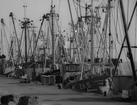 Zoutkamper vissers