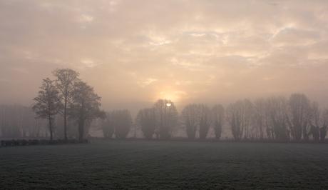 De zon verdrijft de mist