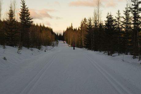 Langlaufen in Trysil