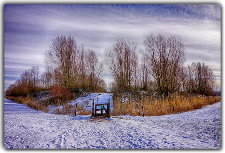 Winter '21
